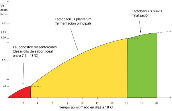 grafico-chucrut