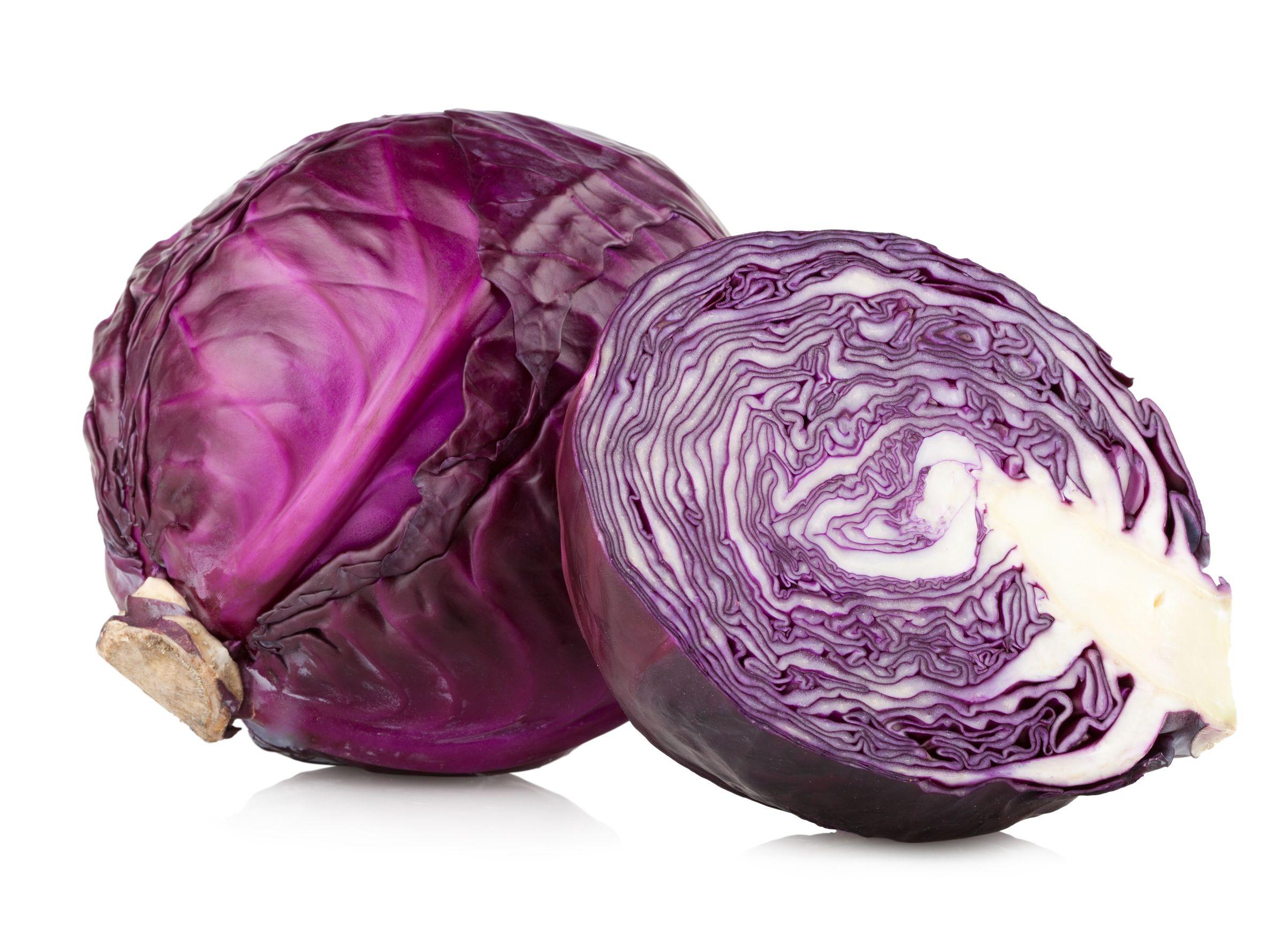 Preparaci n de las hortalizas repollo mundo bacteriano for Como cocinar col lombarda