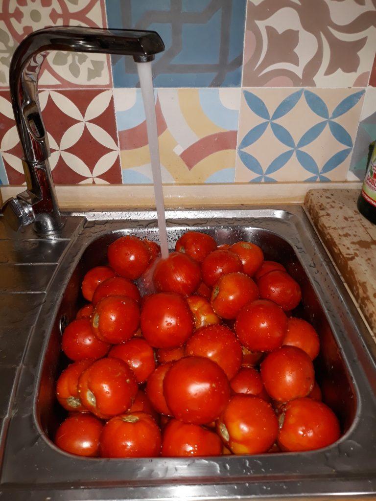 Lavamos los tomates