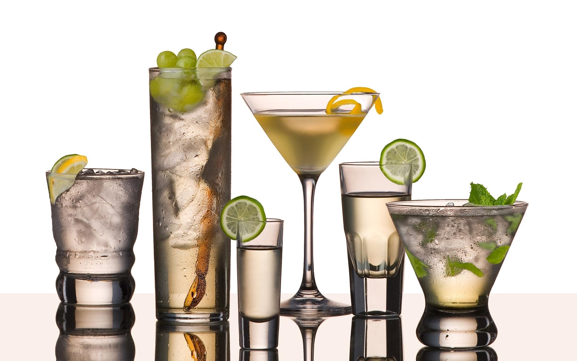Efectos del consumo de alcohol sobre el intestino |  Mundo Bacteriano